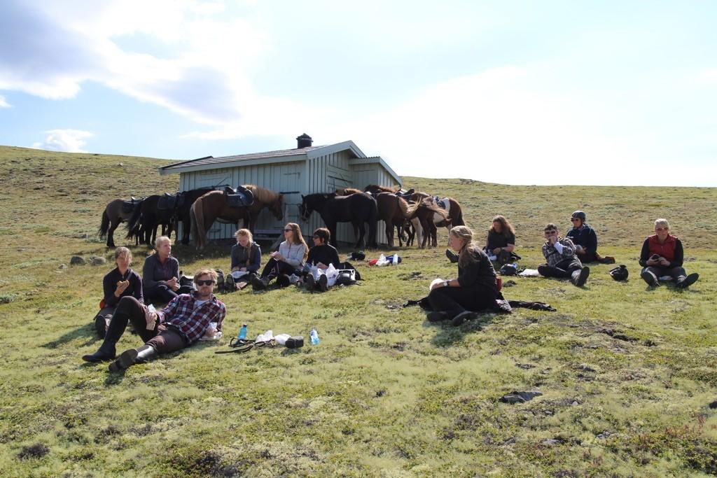 Gruppetur på Dovre med Kvistli Islandshester