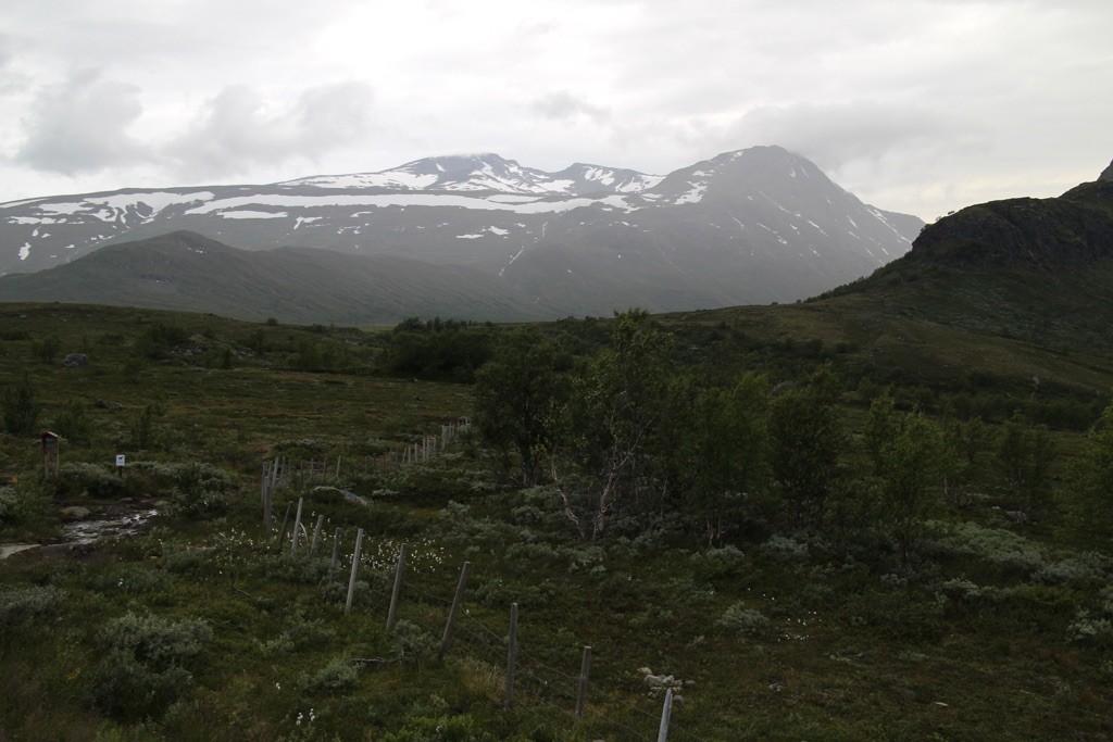 150816 Valdresflya snø