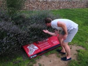 Martin lukter på litt romersk lavendel i Tarragona.